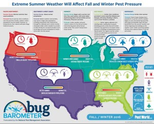 bug-barometer-fall2016