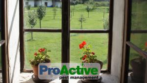 exterior-pest-control